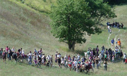 L'Asinovia dei Sibillini è una realtà: domenica l'inaugurazione