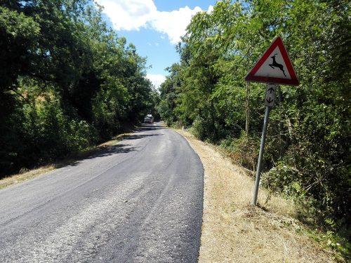 Sistemazione tratti di strade provinciali