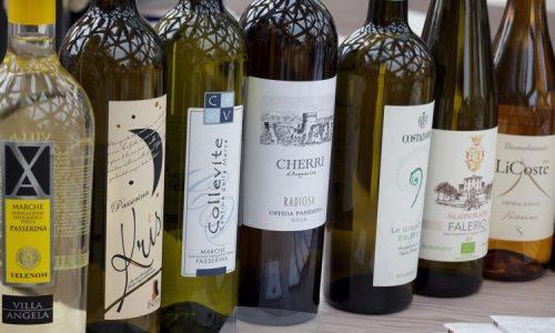 Ad Ascoliva Festival con i Vini Piceni
